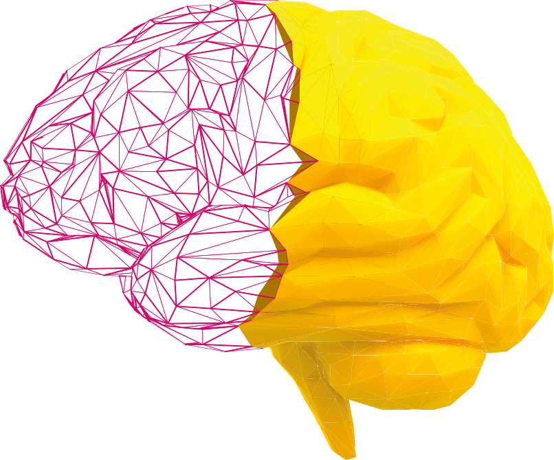 Conceito Cérebro Amcham Talks